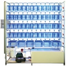 5 Shelf single-sided Zebra Fish System