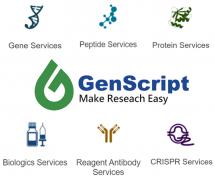 Reagent Services